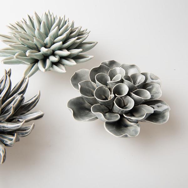 succulente en céramique pour décorer la maison