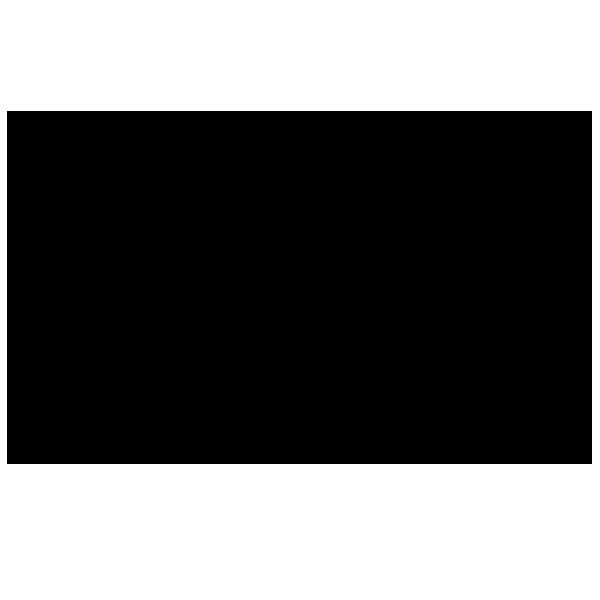 logo noesiis : agence d'architecture intérieur et de décoration et boutique en ligne de décoration éthique et responsable