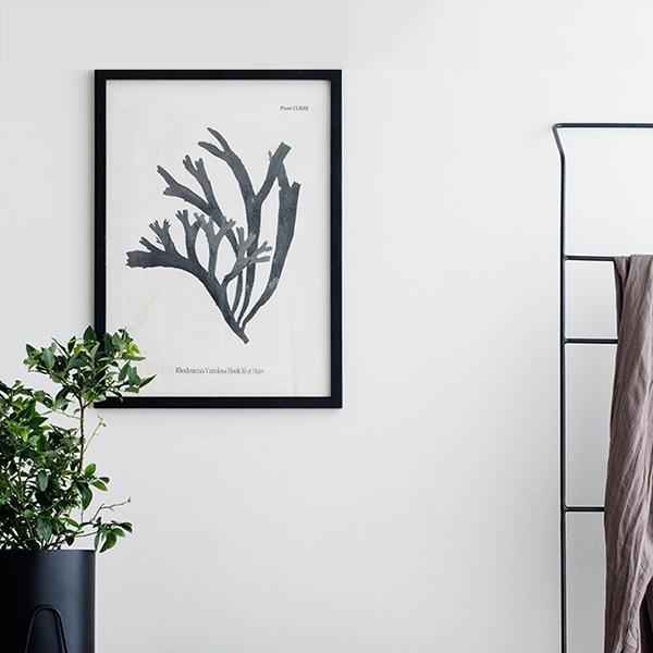 cadre noir avec un motif de plante à l'intérieur, à suspendre n'importe ou de la marque broste copenhagen